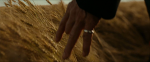 02. Hand In Wheat