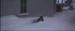 56.Fall In Snow