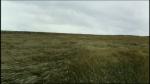 02.Field