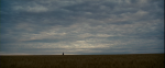 23.ALone in Field