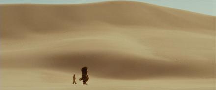 24.Desert