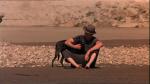28.Farmer & Dog
