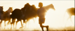 29.Running with Horses