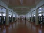 3.Hall