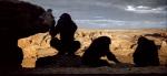4.Apes