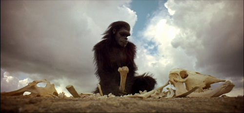 Image result for 2001 space odyssey ape bone