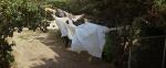 14.Washing Line