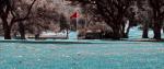 14.Golf