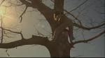 17.Climbing Tree
