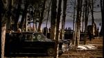 58.Car In Trees