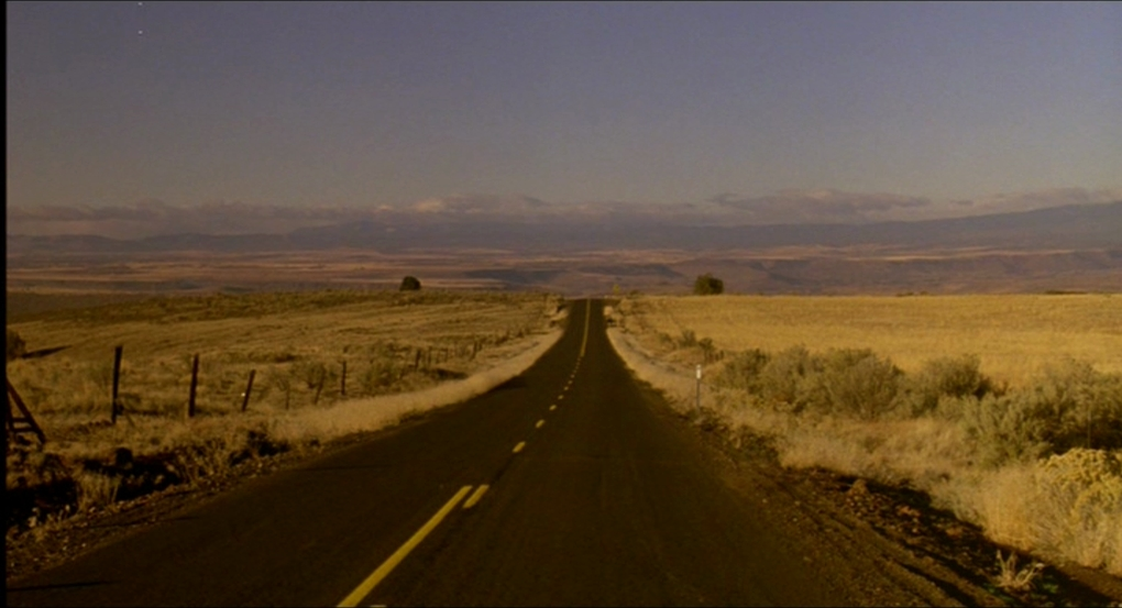 my own private idaho essay My own private idaho is a cult 1991 road movie set mainly in portland, oregon a character study about a young street hustler's search for home and family, the film.